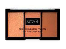 Illuminanti Gabriella Salvete Trio Highlighting Palette 15 g
